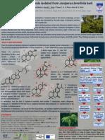 PC 128 ENQO Lisboa 2013 Poster