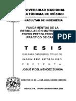 estimulacion matricial.pdf