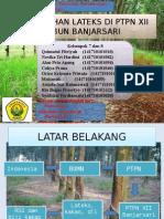 Ppt-Lateks-PTPN-banjarsari kel 7 & 8.pptx