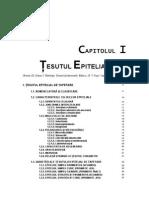 Tesut epitelial - Caruntu
