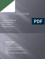 mediulmediul mediteraneean