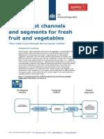 CBI Channels Segments Europe Fresh Fruit Vegetables 2014