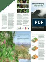 Libros Cientifico de Bosques
