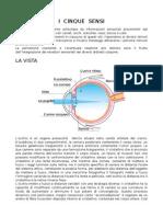 5 SENSI-scienze silvia 4^liceo.doc