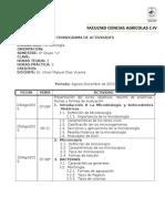 Cronograma de Microbiología Ago-dic 2015