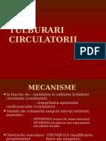 Tulburari circulatorii Lp1