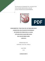 PROYECTO DE TESIS  20-6-14.docx