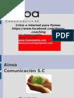 Crisis, Internet Pymes Web