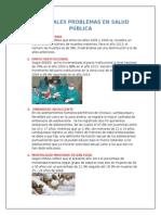 PRINCIPALES PROBLEMAS EN SALUD PÚBLICA.docx