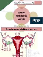 Sekitar Reproduksi wanita