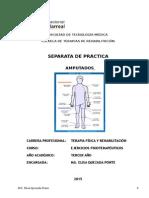Fisioterapia en AMPUTADOS