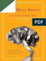 The Male Brain by Louann Brizendine, M.D. -- excerpt