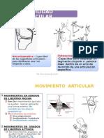 Movilidad Articular - fisioterapia