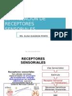 Estimulacion de Receptores Sensoriales-Fisioterapia