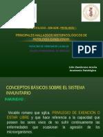 Uss-2015-II.- Patologia i.- Inmunopatologia (10 Setiembre 2015) (1)