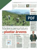 Amigos do Parque plantam 1000 pés - Madeira pensa futuro a plantar árvores