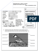 Lesson Birds Assignment