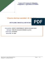 Dynamic Digital Bunch