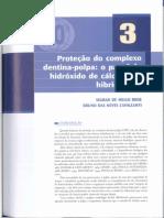 3º Artigo - Proteção Do Complexo Dentino Pulpar