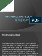 MEMBRANA y Transportes