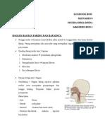 Anatomi Komponen Faring