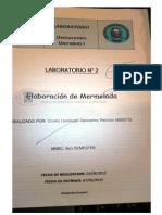 Informe 2 Elaboracion de Mermelada de Manzana