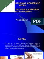 SEMINARIO-HERIDAS (1).pdf