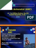 Antenatal Care (ANC).ppt
