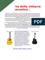 Anatomia Della Chitarra Acustica