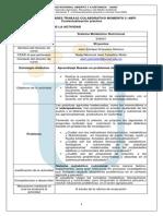 GUIA_ACTIVIDADES_MOMENTO_3_CONTEXTUALIZACION_PRACTICA_-SMN.pdf