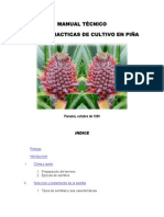 Guide for fast puerto rico fruit manual pina ccuart Image collections