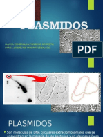 Plasmidos