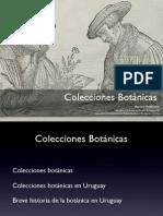 colecciones botánicas