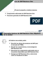 01 Conceptos Basicos de SAP Business One