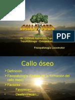 Callo Oseo II
