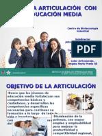 Presentacion Articulacion Con La Media - Octubre de 2015