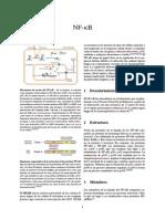 NF-κB.pdf