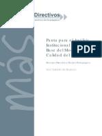 Pauta de Analisis Institucional SACG