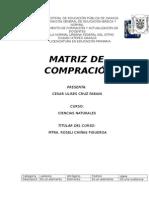 tarea de roselia matriz1.docx