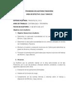 2. Programa Auditoria Efectivo,Caja y Bancos