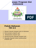 Program Gizi Indonesia