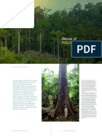 Status of Philippine Forests