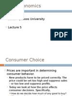 Microeconomics Lecture 5