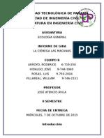 Informe de Ecologia de Las Macanas