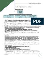 modul_Internet_si_comunicare.pdf
