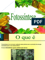 fotossntese-090511114410-phpapp02