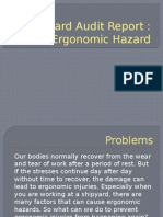 Hazard Audit Report