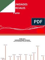 OPORTUNIDADES DE NEGOCIO REGIÓN PUNO.pdf