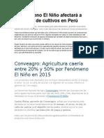 El Fenómeno El Niño Afectará a Una Serie de Cultivos en Perú