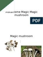 Mekanisme Jamur Magic Mushroom